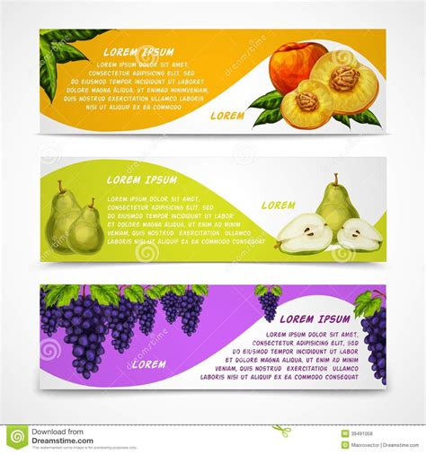 Mixed Fruits Banners Collection Stock Vector Image 39491058 Food Banner Design Template Free