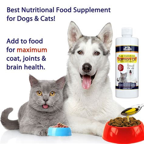 best dogs for cats best nutritional supplements for dogs and cats cleo pet products salmon for dogs