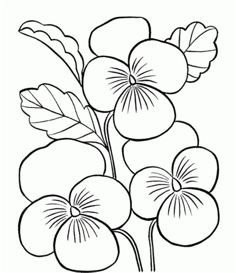Flower Coloring Pages Printable Drawings Pinterest Flower Coloring Pages Printables