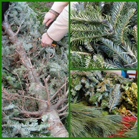 how to dismantle a christmas tree how to transform a tree into a wreath