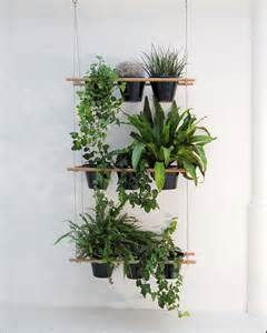 hanging window plant shelves living small a hanging window box planter gardenista