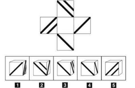test ingresso ostetricia simulazione logica test ammissione simulazione