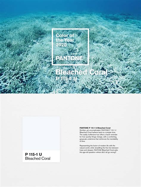 charming Pantone Color Of The Year 2020 #1: bleachedcoral.jpg