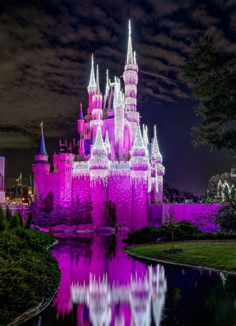 beautiful   cinderella castle  disney world