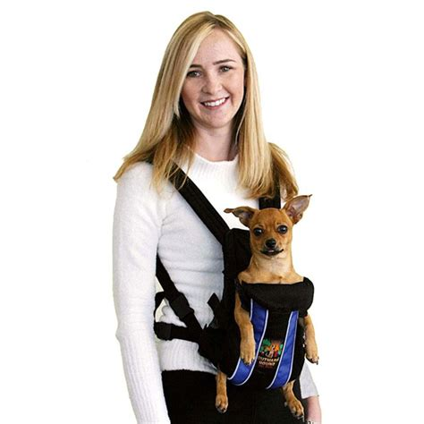 puppy carriers legs out front carrier with blue stripes baxterboo
