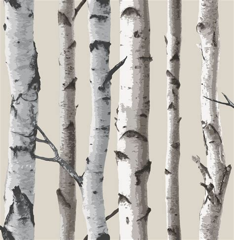 Aspen Branches Decorating by Decor Birch Tree Wallpaper Fd31051 Cut Price