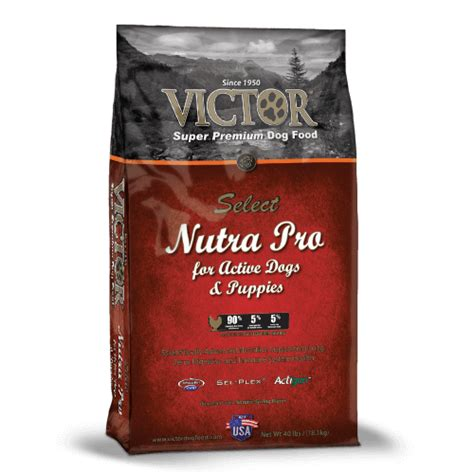 where to buy victor food nutra pro victor pet food