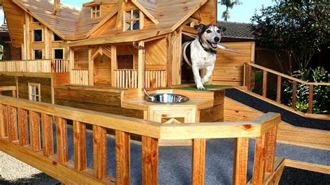 house dog bite luxury dog house www pixshark com images galleries with a bite