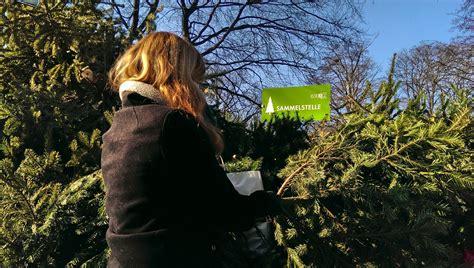 Baum Kaufen 246 by Best 28 Oh Christbaum Wie Entsorge Ich Wie Schm 252