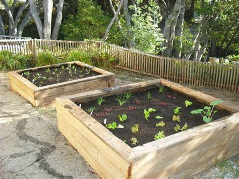 Garden Planter Boxes by Planter Boxes Home Sweet Home
