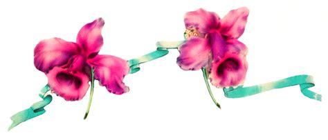 flower design with ribbon antique images free flower daffodil border digital
