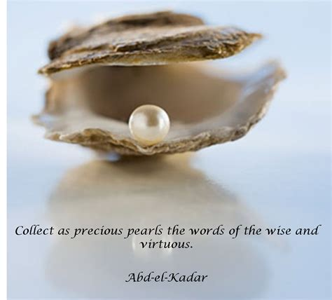 collect as precious pearls the words of the wise and