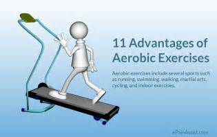 Academy Sports Weight Bench Benefits Of Anaerobic Exercise Good Oils For Cooking