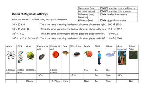 orders of magnitude worksheet aqa biology 9 1 new gcse by sdagar214 teaching resources tes