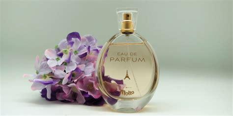 Parfum Molto molto eau de parfum product cosmetics reviews