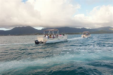 kaneohe sandbar boat rental old timber boats for sale qld gumtree pontoon boat rental