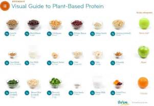 plant based protein choices real foods mom