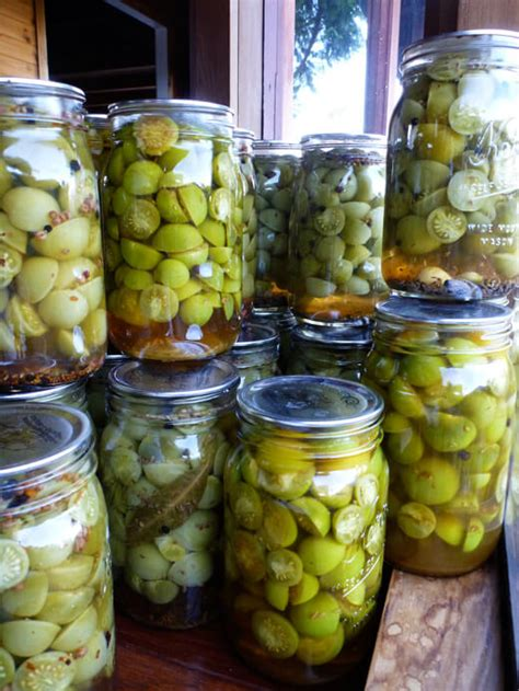 four ways to pickled green tomatoes garden betty