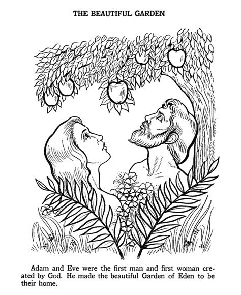 coloring page for adam and eve adam and eve coloring page bible story coloring pages