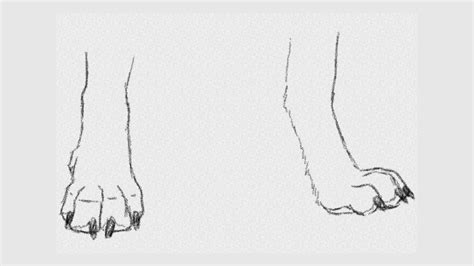 werewolf paw tutorial how to draw wolf front paws art tutorial youtube