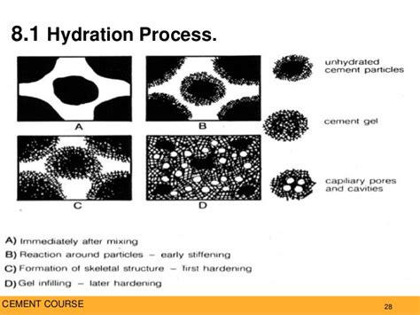 hydration of cement cement materials characterization 2