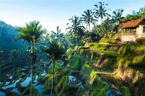 Bali Tipps   Alle Artikel auf einen Blick   Urlaubsguru.de