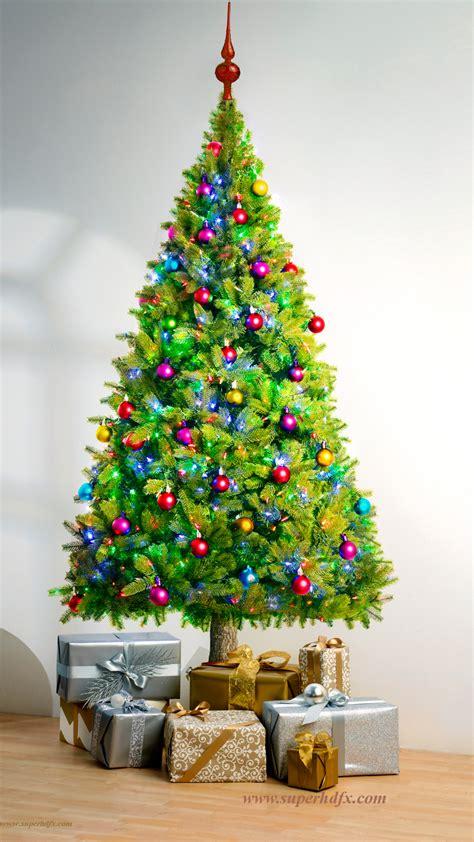 x tree beautiful tree hd wallpapers superhdfx