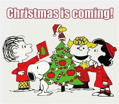 christmas  coming pictures   images  facebook tumblr pinterest  twitter
