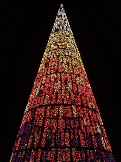 christmas tree madrid spain christmas pinterest