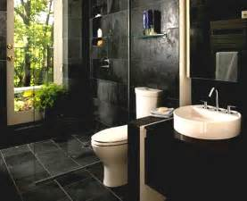bathroom photo gallery toilet design ideas houzz transitional amp remodel pictures