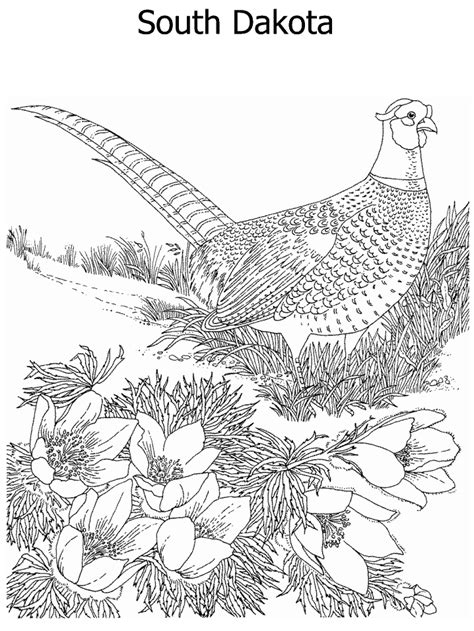 free coloring pages of the landforms