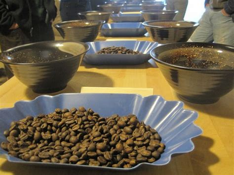 coffee cupping table coffee cupping a sensory experience i need coffee