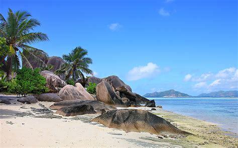 nature landscape seychelles island beach rock palm