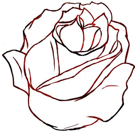 Outline Sketches Of Flowers by Drawing Outline 21428 Hd Wallpapers Pictures In Flowers Clipart Best Clipart Best