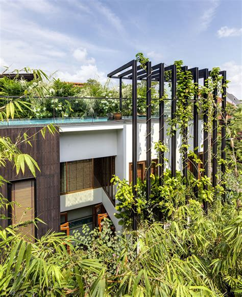 gorgeous vertical garden house by aamer architects