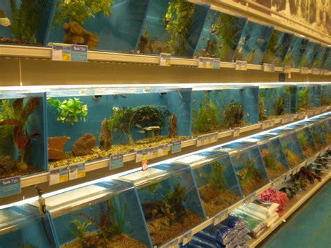 puppy store milwaukee pet fish store