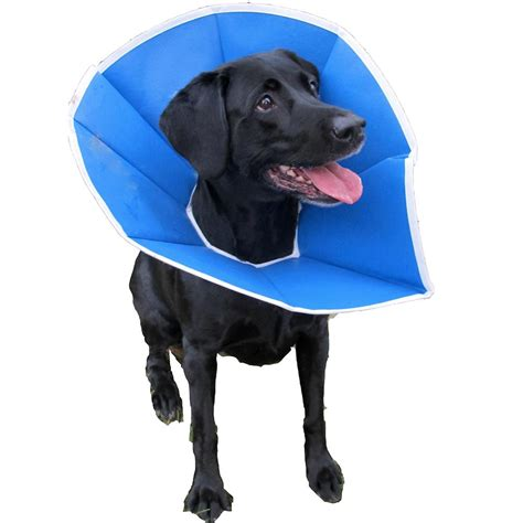 elizabethan collar for dogs trimline soft elizabethan collar 12 inch e collars at arcata pet supplies