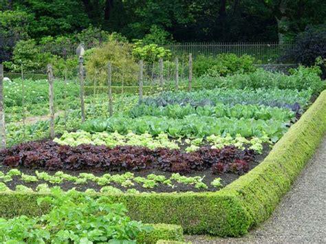 tips  growing   vegetable garden preen