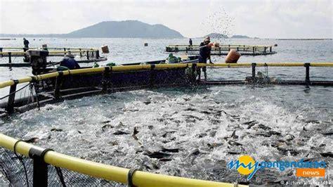resmikan kja jokowi berharap indonesia tingkatkan ekspor