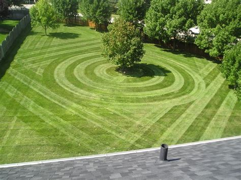 lawn care the top reasons why lawn care businesses fail hubpages