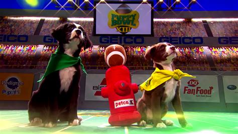 animal planet puppy bowl animal planet and pedigree add vr and branded content to this year