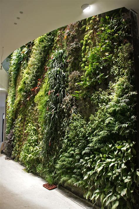 indoor vertical gardens ideas  pinterest outdoor wall planters wall planters