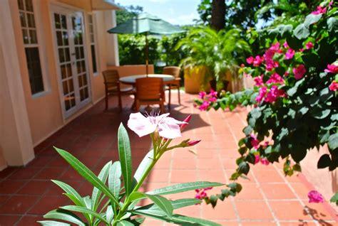 flower view garden apartments flower view garden apartments suite in flower garden
