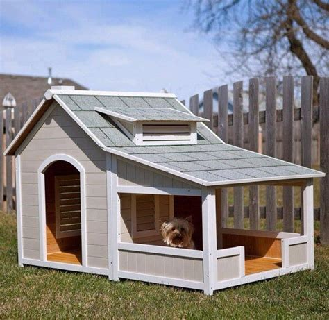 cool dog houses cool dog house lily pinterest
