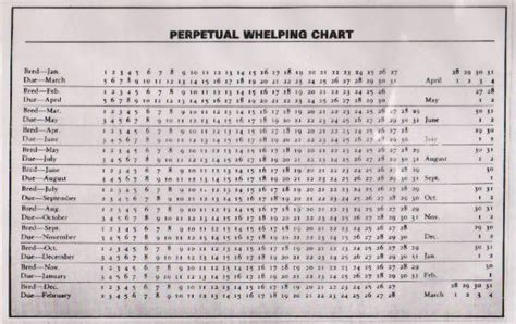 Whelping Chart Puppy Birth Record Whelping Chart Chart