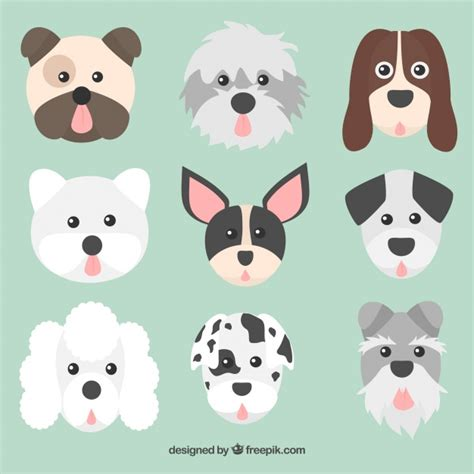 different races of dogs faces collection dogs of different races vector free