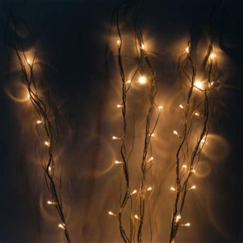 Lit Twig Lights Lights On Twigs