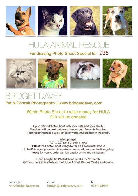 Fundraising Letter For Animal Shelter 29 best fundraising ideas images on
