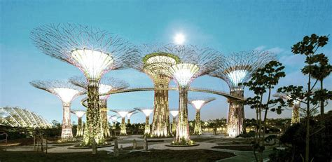 singapore trees of light singapore s supertrees light up the night co exist
