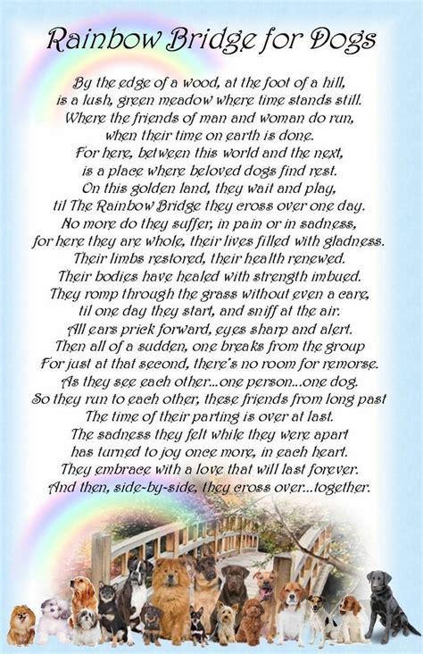 2219 best rainbow bridge images on quote 534 best pet poems messages images board